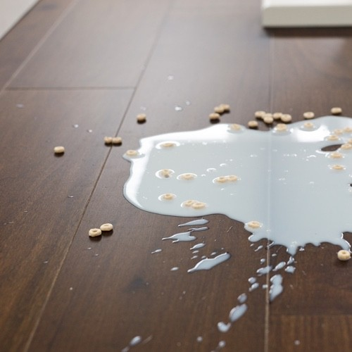 Milk spill cleaning tips | Great Lakes Carpet & Tile